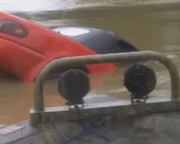 Hero Saves Woman and Her Dog From Sinking Car in Raging Flood Waters