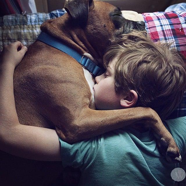 Dogs Love Us 2