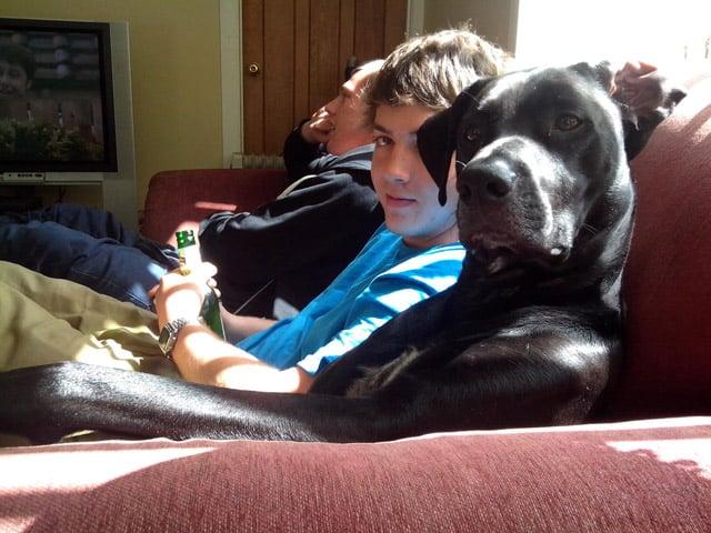 Dogs Love Us 8