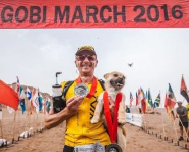Dog Finds His Owner in a Race and Follows Him Almost 100 Miles
