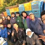季節労働愛媛県みかんアルバイト最終日(収穫終了・感動の瞬間)の写真