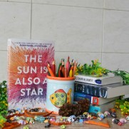 sparkling-letters-book-blog-review-the-sun-is-also-a-star-by-nicola-yoon-3