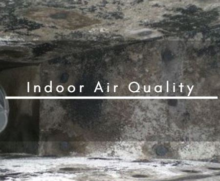 Indoor Air Quality (Mold and Microbials)