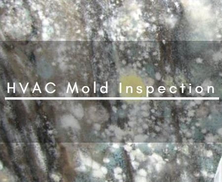 HVAC Mold Inspection