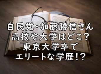 加藤勝信 高校 大学 学歴 画像