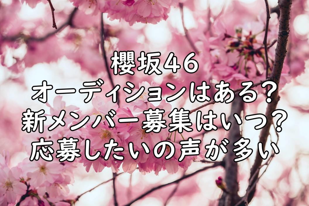 櫻坂46 オーディション 新メンバー募集 画像