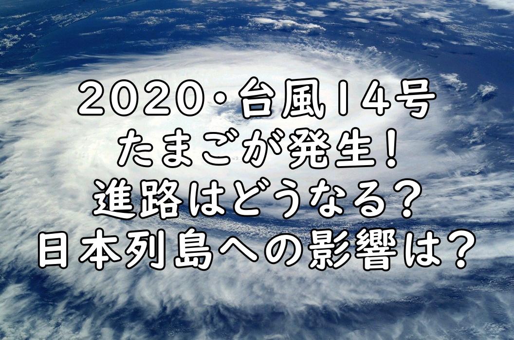 2020 台風14号 たまご 進路 画像