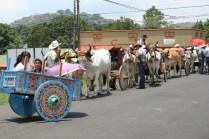 Boyero Parade