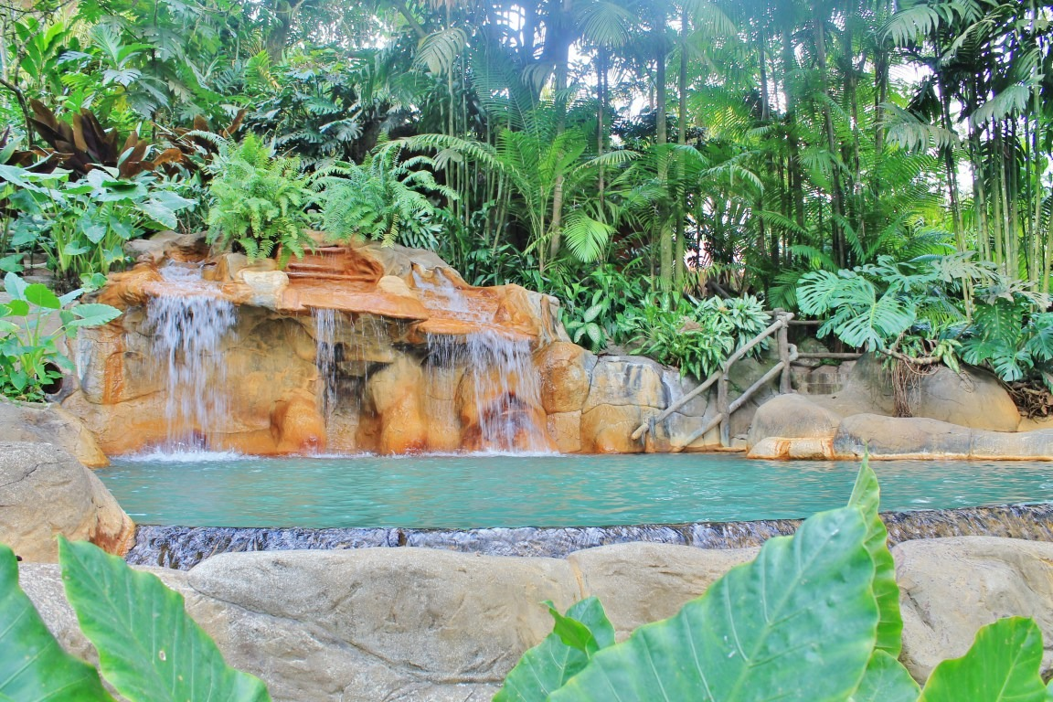 Discount: Two-Day Springs Resort Hot Springs Pass: Self-Drive Option (La Fortuna/Arenal)