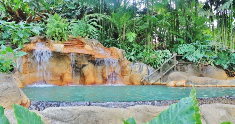 Discount: Arenal Combo Tour with Hanging Bridges, La Fortuna Waterfall, Arenal Volcano Tour (1968 Trail Tour) and Springs Resort Hot Springs (La Fortuna/Arenal)