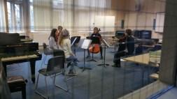 Amy Furfaro coaching a Mendelssohn String Quartet, Feb 2015 Photo © Charles Sewart 2015