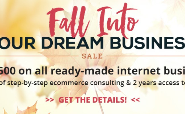 Internet Businesses For Sale Pure Ecommerce