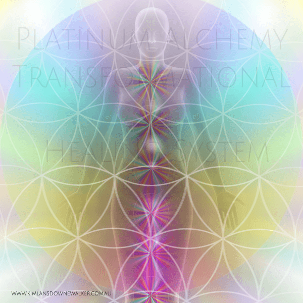 Oneness Platinum Alchemy Ascension Kit