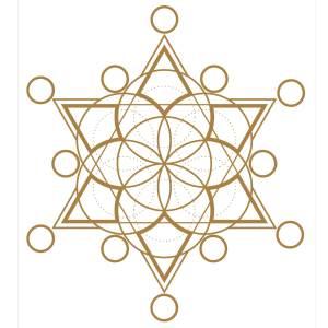 Platinum Alchemy Energy Medicines