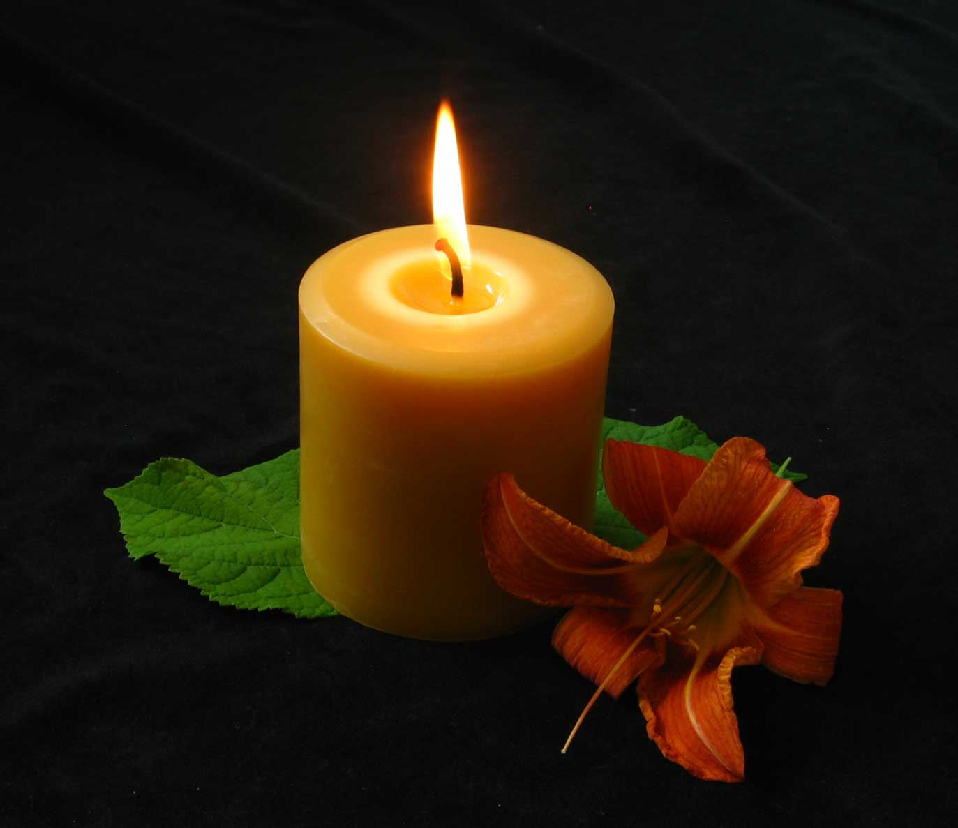 Honey Candles Blog  Your Online Source For All Things