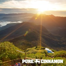 show-images-sri-lankan-pure-cinnamon