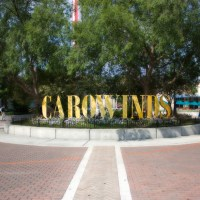 $50 Million Expansion for Carowinds