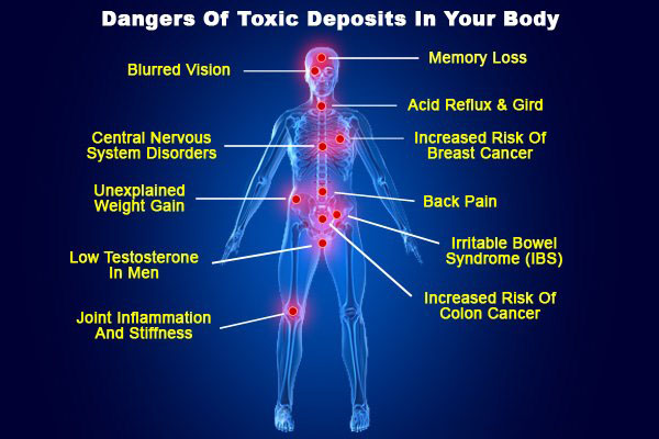 articles-dangers-of-toxic
