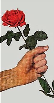 Le temps des roses aux PUR