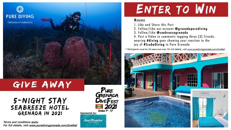 Giveaway 5 night stay at Seabreeze Hotel in 2021 Pure Dive Fest