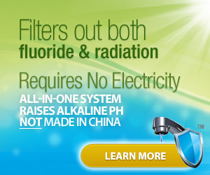 Breakthrough All-In-One Water Filter!