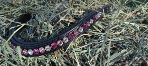 crystal black browband - pink multi 2