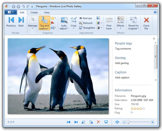 Windows Live Photo Gallery - Edit