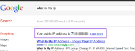 Google what is my IP address