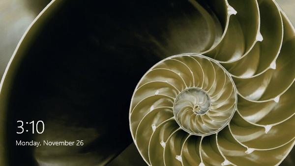 Snail shape image