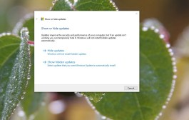 Show or hide updates in Windows 10