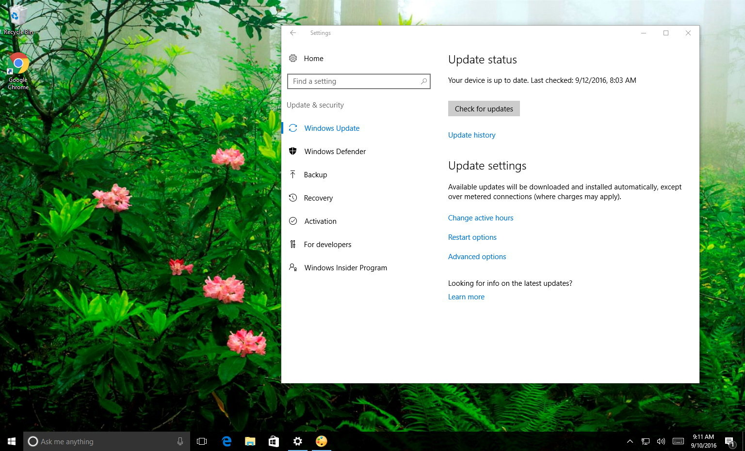 how to change windows update to manual windows 10