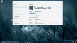 Windows 10 version 1703 on this Tech Recap
