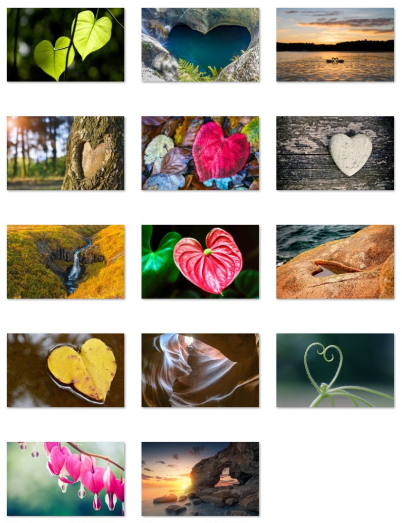Heart in Nature wallpapers