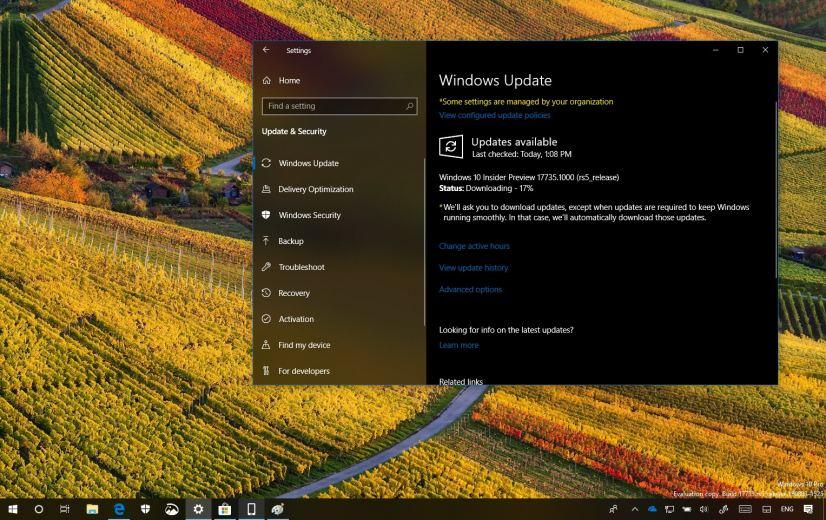 Windows 10 build 17735