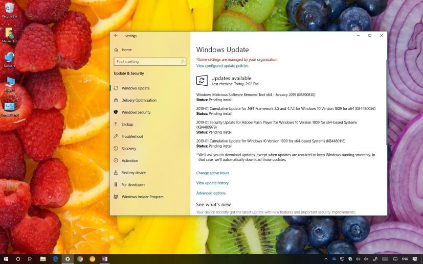 Windows 10 KB4480116