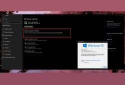 Windows 10 version 1903 Download and install option