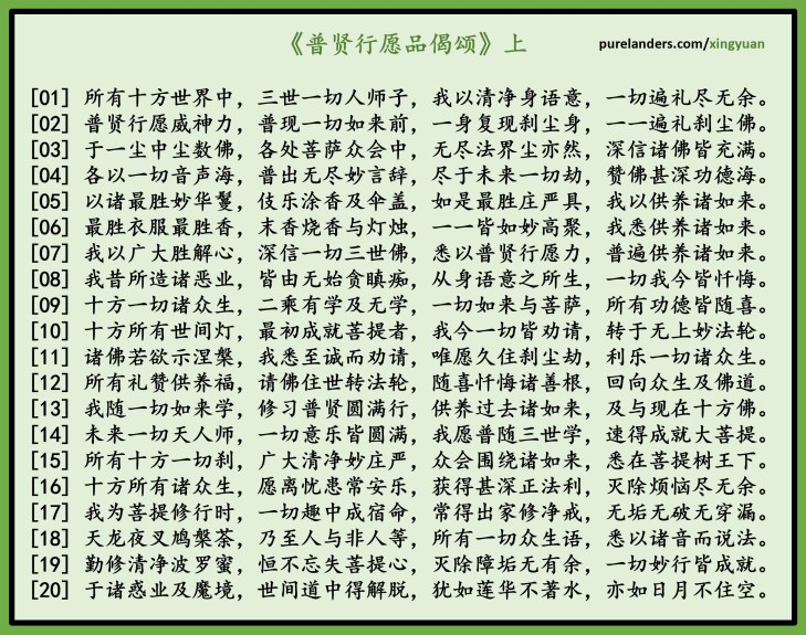 This image has an empty alt attribute; its file name is xingyuan1.jpg