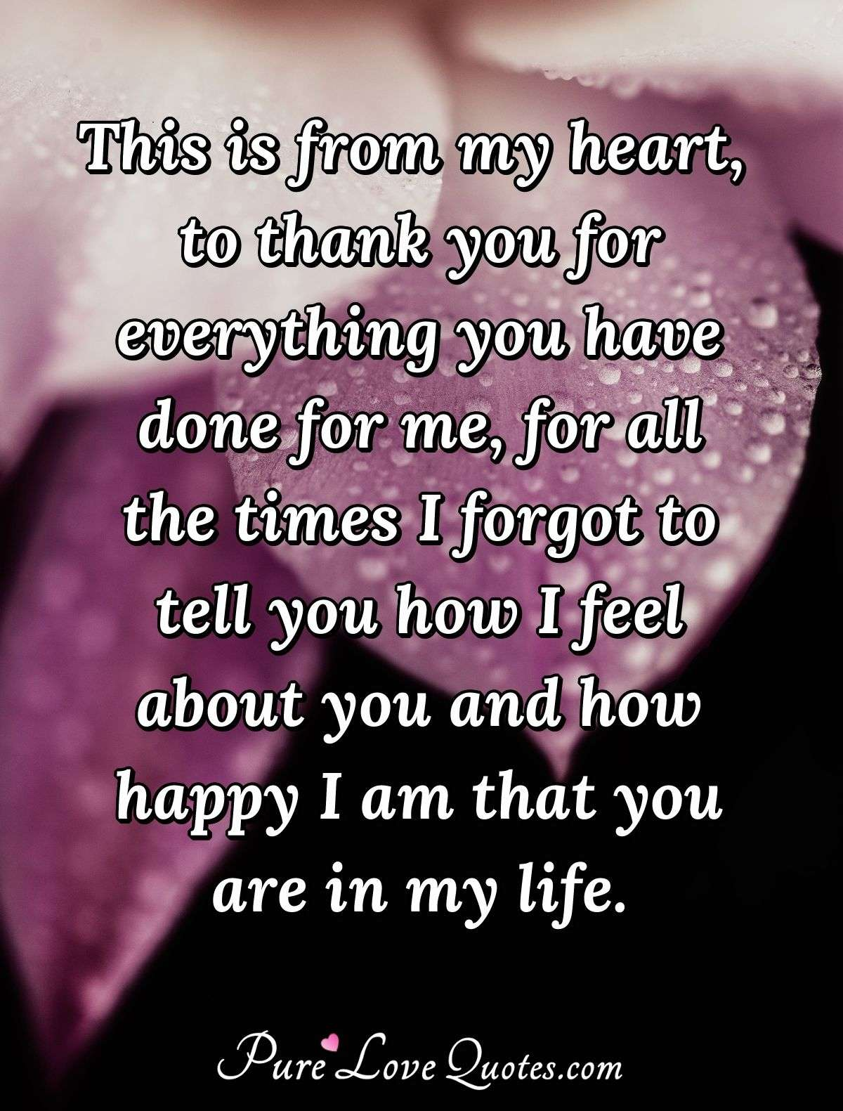 Thank You For Coming Into My Life : thank, coming, Heart,, Thank, Everything, For..., PureLoveQuotes