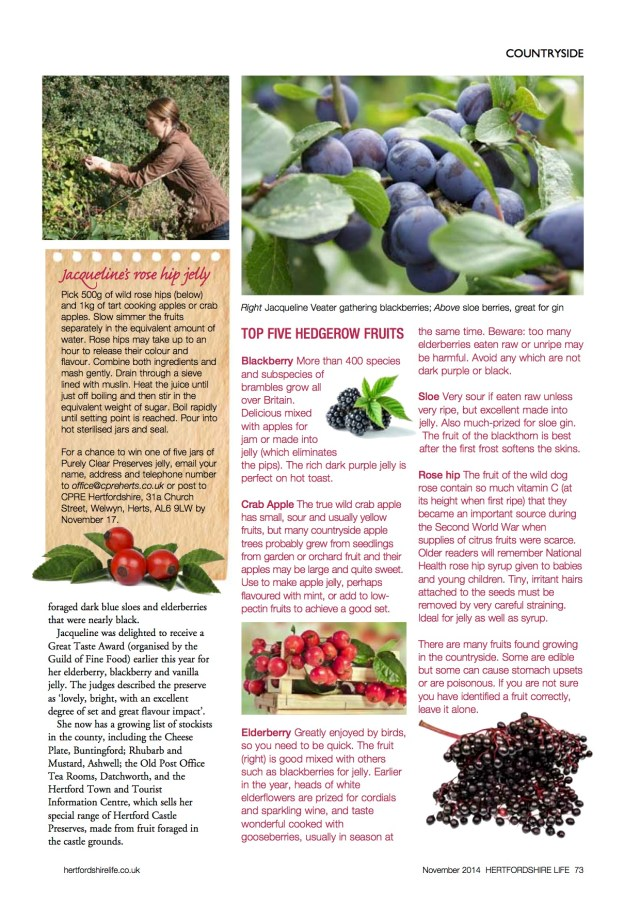 Hertfordshire Life Nov 2014 Mists and mellow fruitfulness page 2
