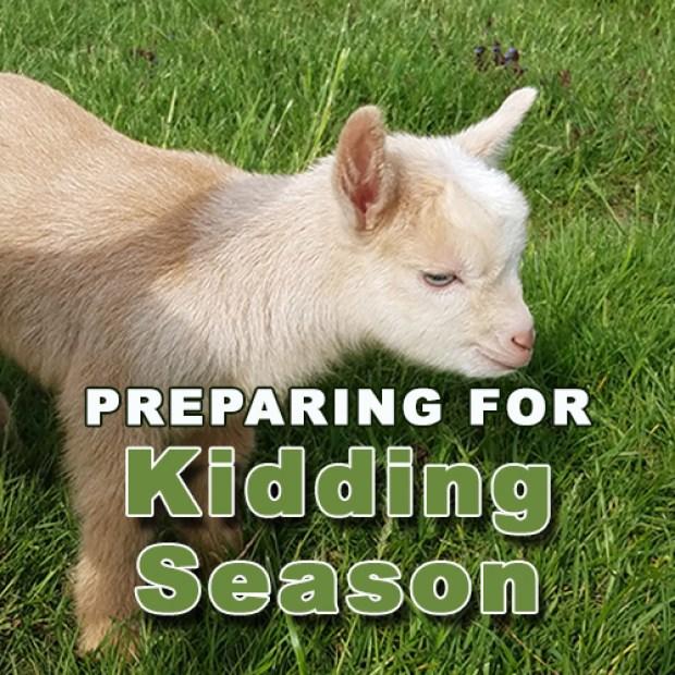 Preparing for Kidding Season