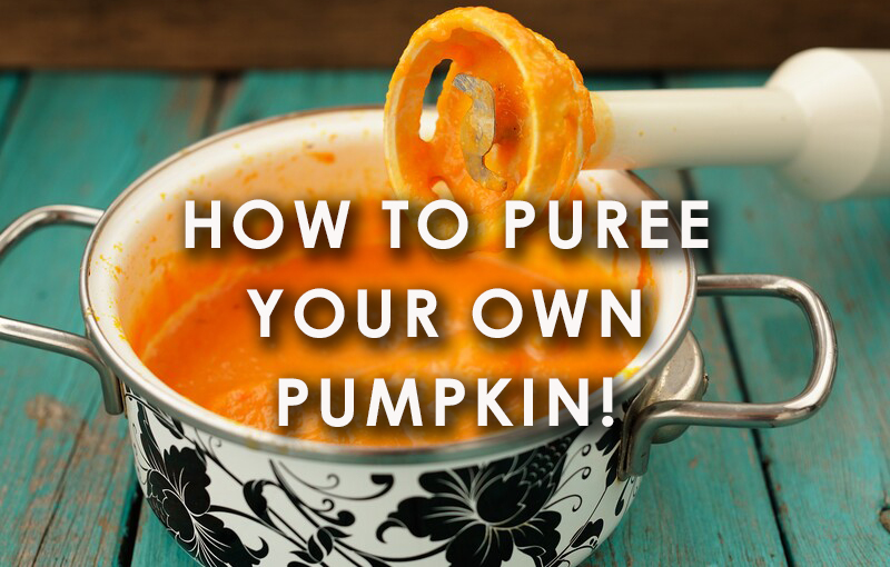 How to puree your own pumpkin!