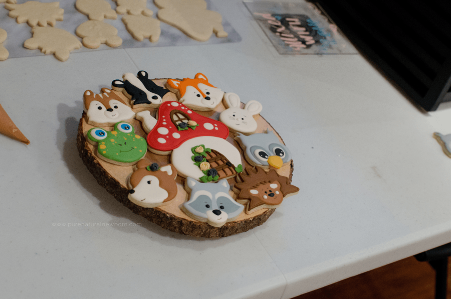 cookie decorating workshop ottawa, vintage cookie jar, woodland animal cookies sample platter