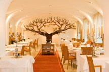 Luxury Restaurants in Vienna Austria
