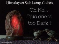 Large Himalayan Salt Lamp - Pure Pink Salt