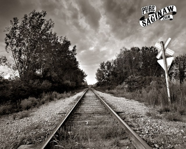 Crow Island railroad Tracks