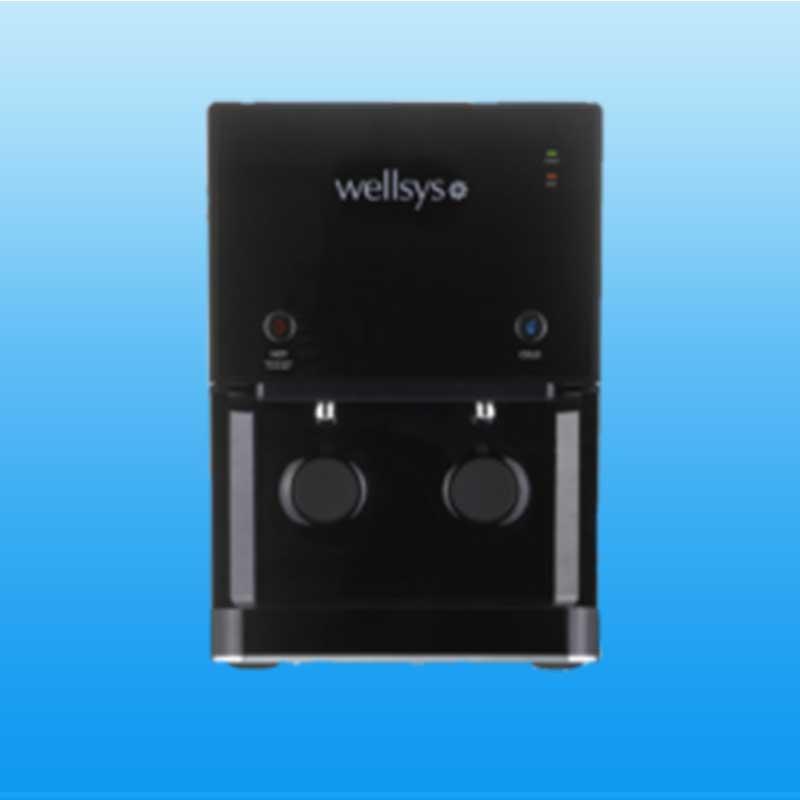 Wellsys 9000
