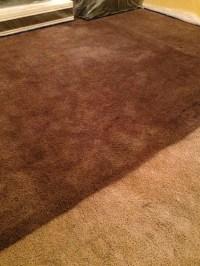 Rit dye carpets | purfectlynotpurfect