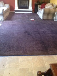 Rit Carpet Dye | Taraba Home Review