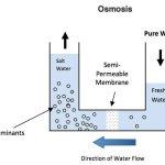 Clases de purificadores de agua según el método utilizado