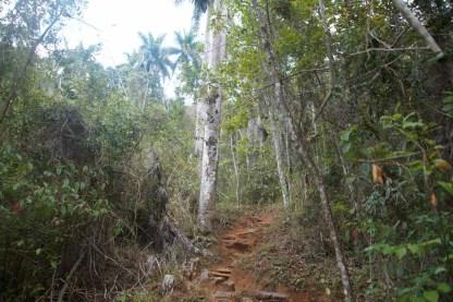 puriy-reiseblog-trinidad-29